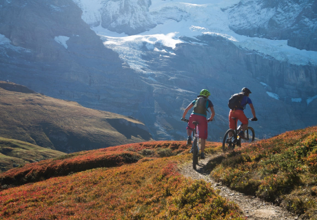 Brenta Trail & Gardasee selfguided
